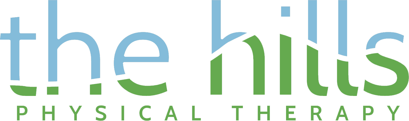 Physical Therapy in Litchfield